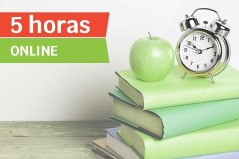 Clase Online Universidad (5 horas)